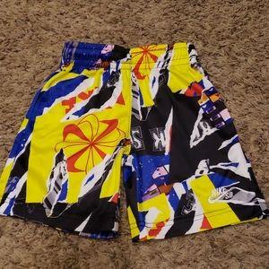 Nike SB Swim Shorts